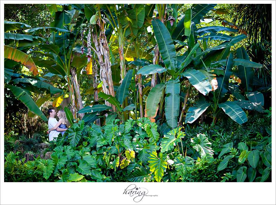 Verena Todd Engagement Session Fairchild Tropical