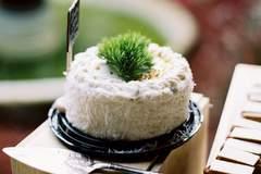 Courtney + Alfredo's Wedding Cakes| Miami, Florida