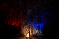 Kampong - National Tropical Botanical Garden Weddings | Miami at Night