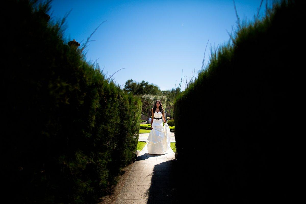 best first look pics vizcaya historic gardens