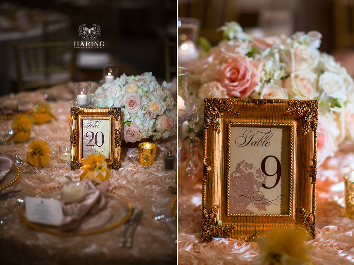 wedding photographer orlando ritz carleton