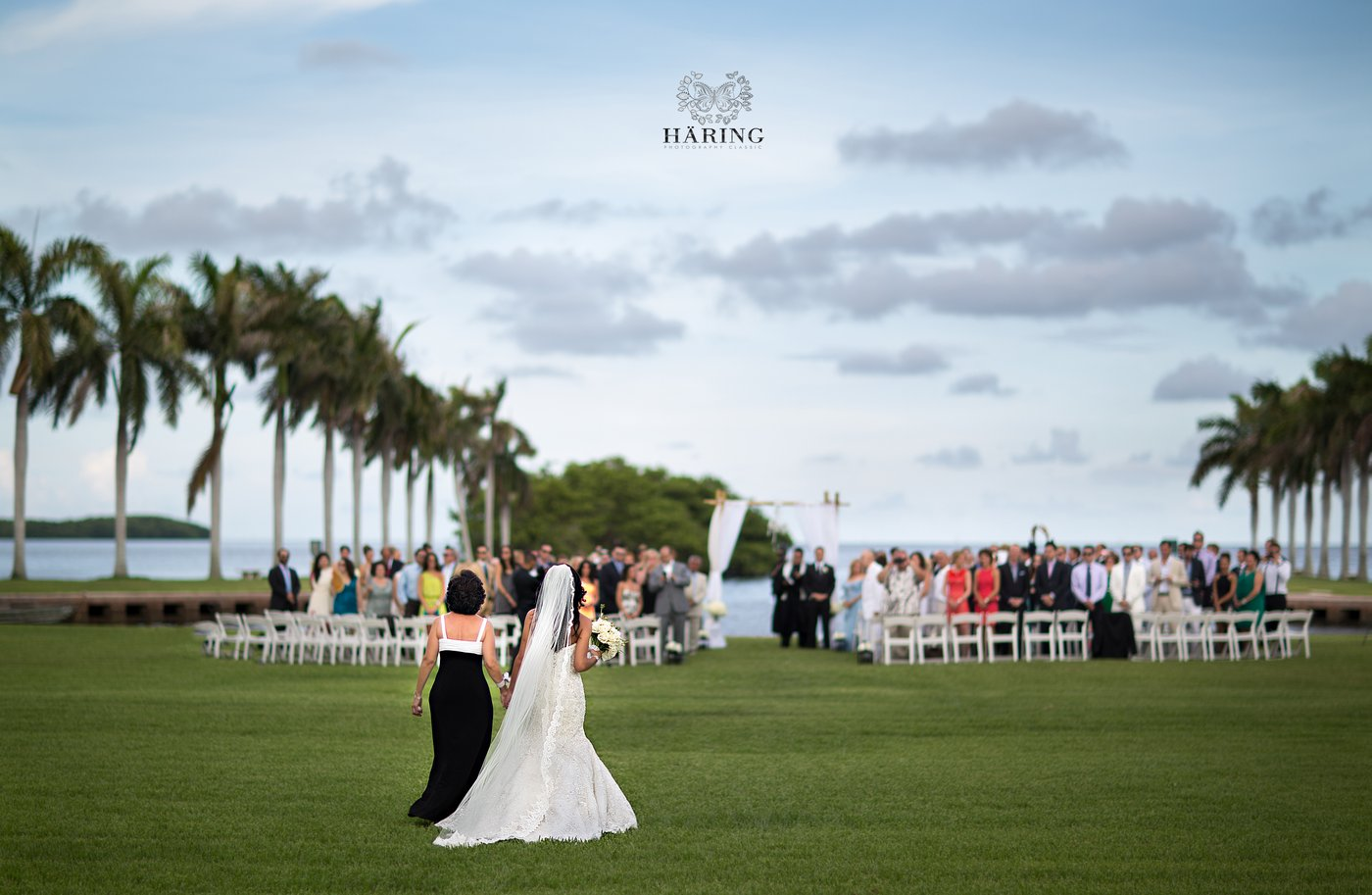 amazing wedding photographer in florida