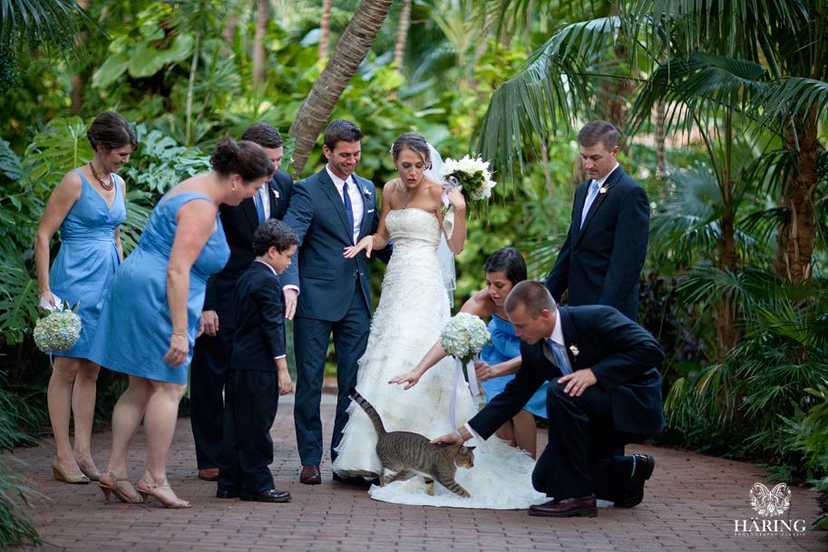 Heather + Derek | The Hemingway House, Key West, Miami Wedding Photographers | Häring Photography, Indian Wedding Photographer in Florida, Best Muslim, Hindu - South East Asian Wedding Photographers